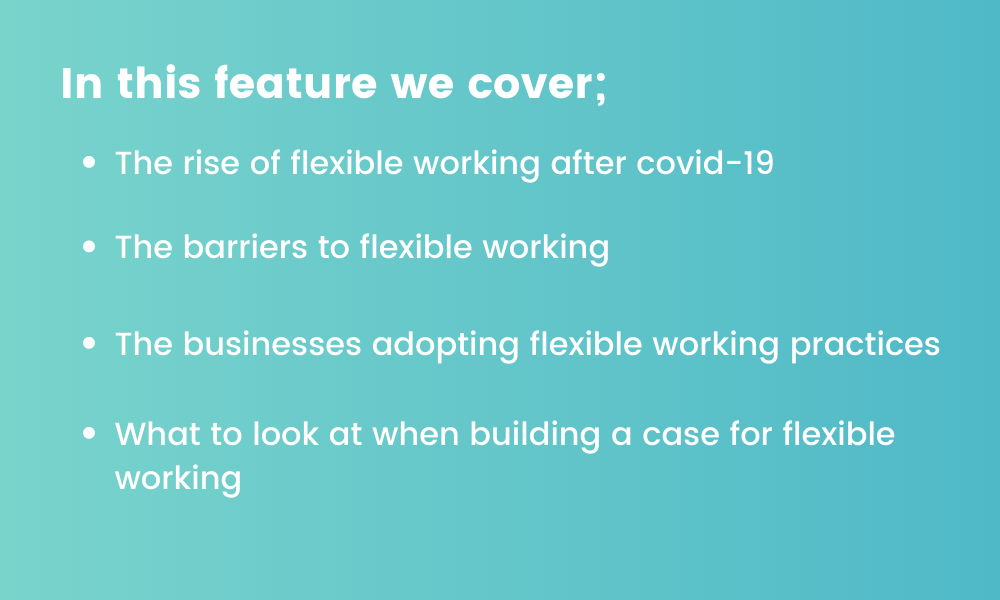 graphic detailing flexible working features